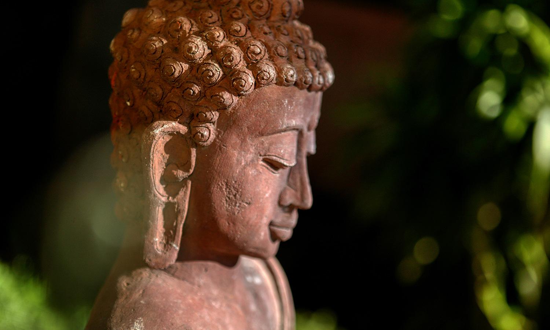 Product Detail Image | Bali Hai Resort and Spa